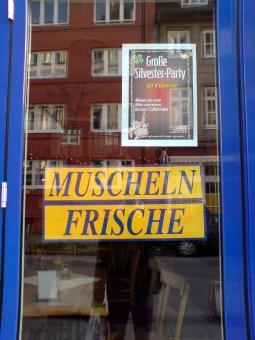 Muscheln Frische