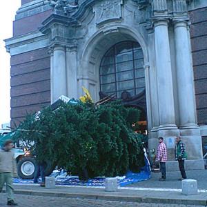 Große Kirche, großer Weihnachtsbaum