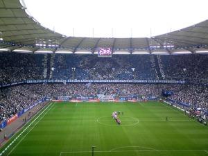 HSV- FCN 1:1